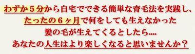 清水式育毛・発毛プログラム.jpg
